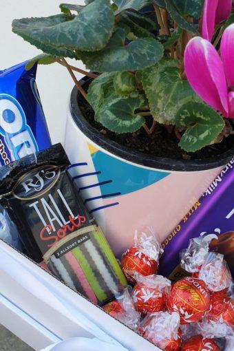 Plant treats